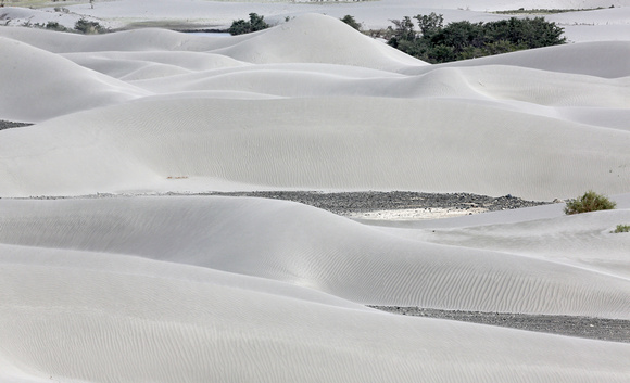 Sand dunes, Nubra valley, Ladakh, India