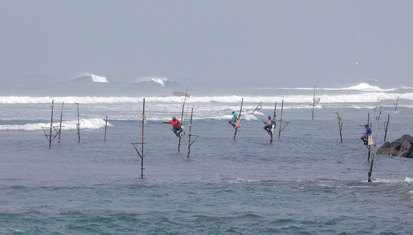 Stilt fishermen, Welligama, Sri Lanka